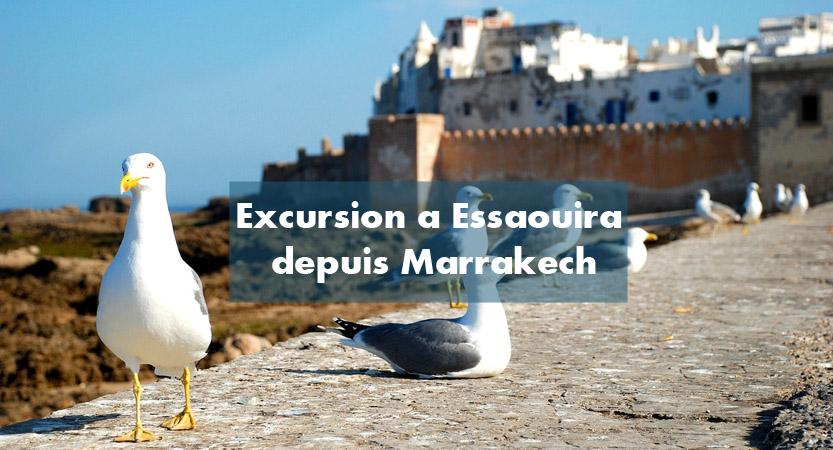 Excursion journée Essaouira depuis Marrakech