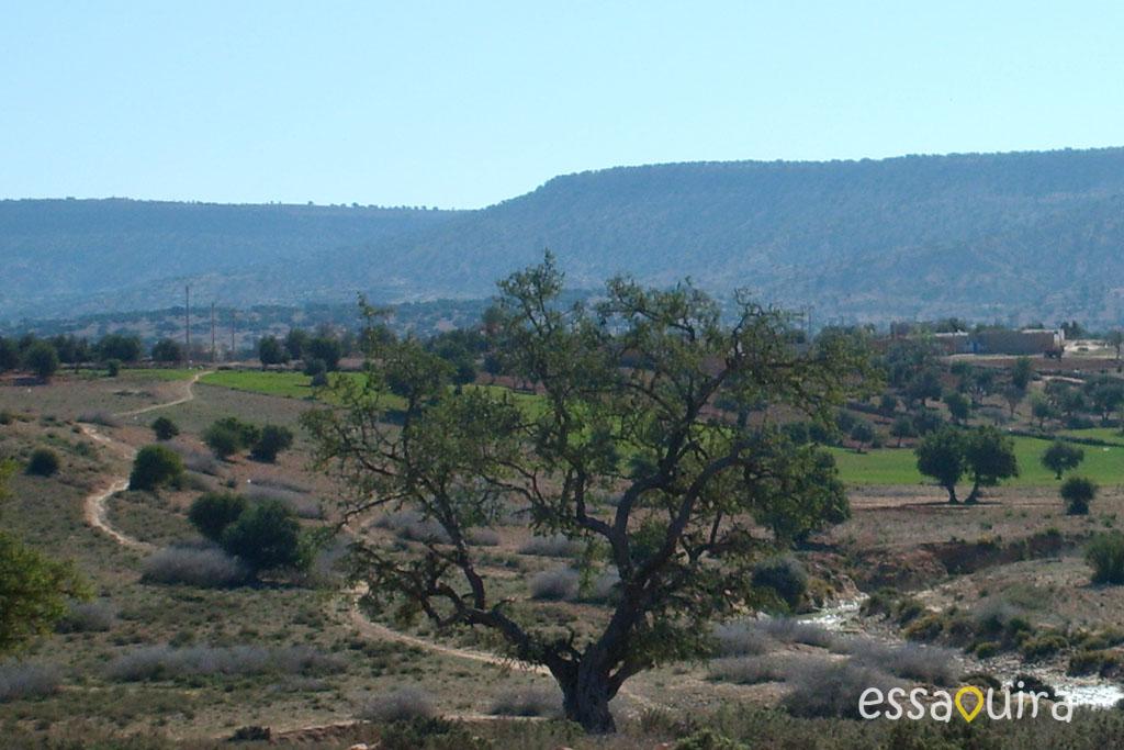 Visite région Essaouira
