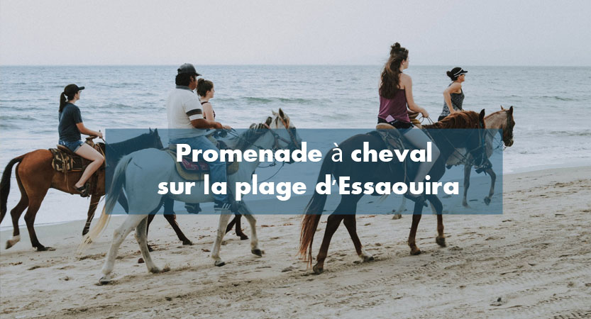 Promenade a cheval plage Essaouira